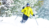 Skier in bright yellow coat with snowy pine trees in the background
